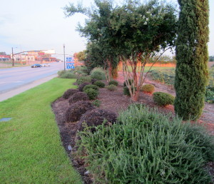 Don't forget West Columbia Beautification Foundation tribute, Thursday