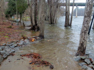 Lexington County prepares for flood conditions