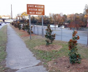 West Columbia Beautification Foundation plants Sunset with magnolias