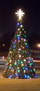 Reminder: Cayce's Tree Lighting Ceremony is 6 p.m. Thursday