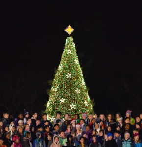 US_National_Christmas_Tree_2012