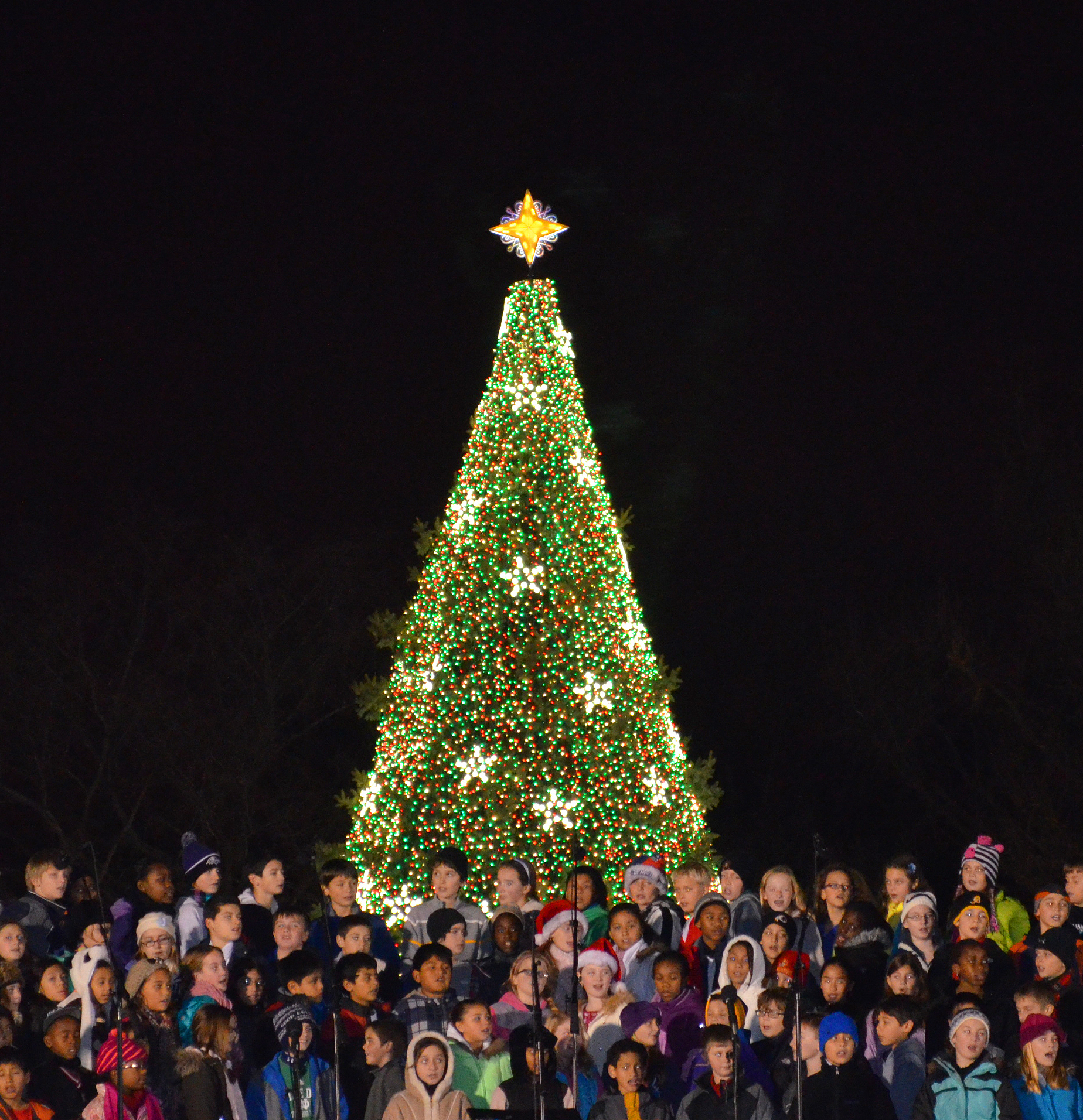 Springdale Expects Crowd For Dec 7 Tree Lighting West Metro News
