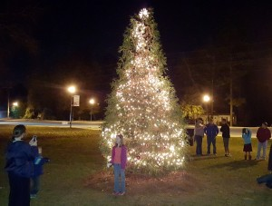 Town of Springdale lights up its Christmas tree