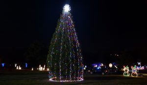 Cayce lights its tree, Lexington 2 students sing