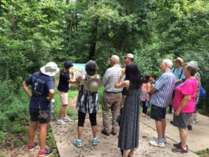 Last summer tour of 12,000 Year History Park held in Cayce