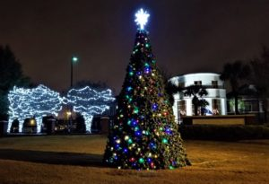 West Columbia lights tree, City Hall illuminated for the Christmas season