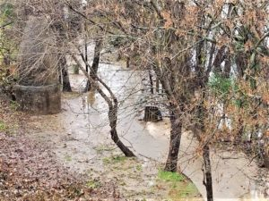 Portion of Timmerman Trail open, lots of Cayce Riverwalk closed