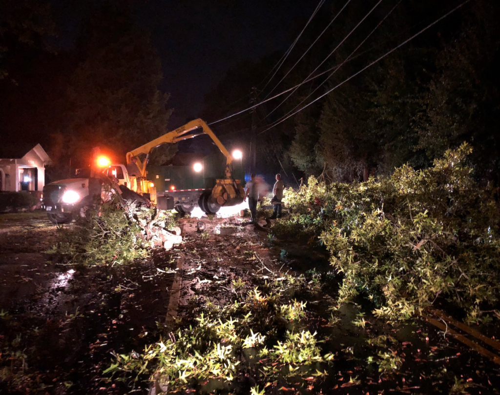 Halloween storm takes down tree, power line in Lexington