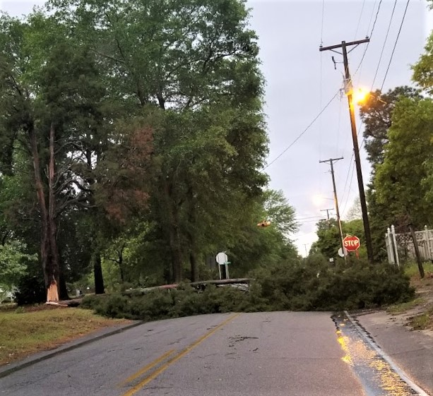 Trees down, some flooding in West Columbia
